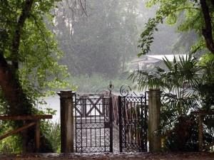 2151269693 pioggia estate