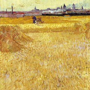 campi di grano van gogh