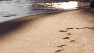 Onda sulla riva